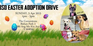 Adoption Drive 050415