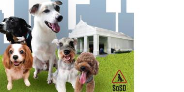 SOSD Healing Paws 260615