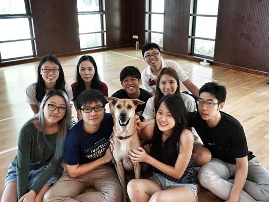 Canine Chums
