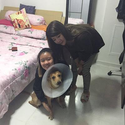 Jocelin-Merry-adopter0506161