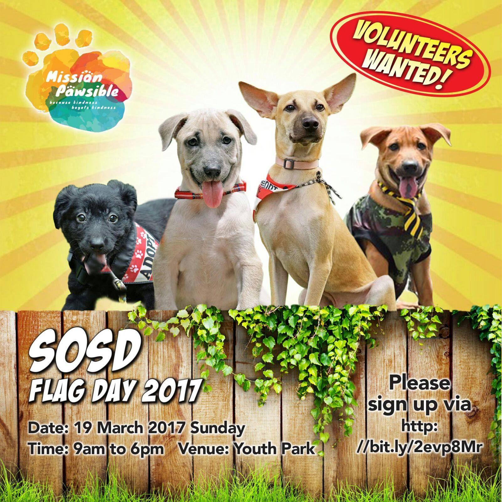2017 Flagday Mission Pawsible