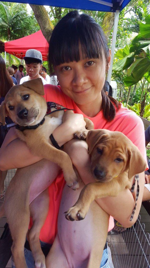 Kristy Yew, Rehomer Team