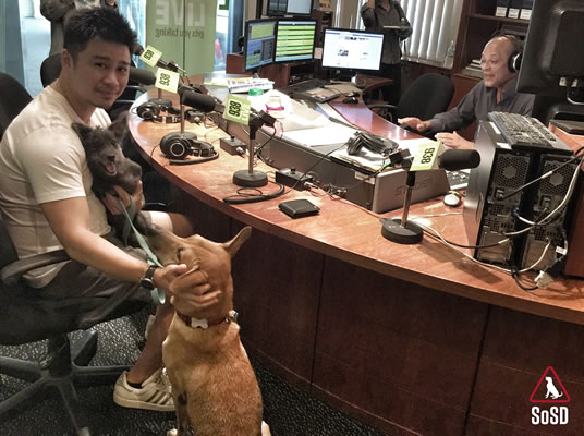 Qian Qian Therapy Dog 4