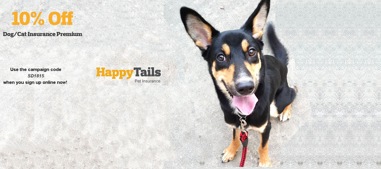 Happy Tails 2