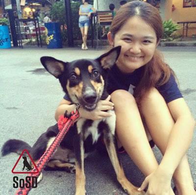 Rehoming Volunteer Hui Jin 090416
