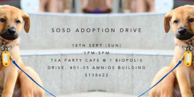 Adoption Drive 180916