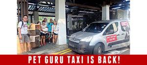 Pet Guru Taxi