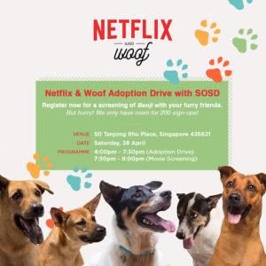 Netflix and Woof 190418