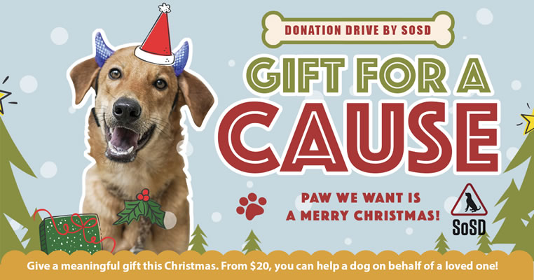 SOSD Christmas Gift for a Cause 2018